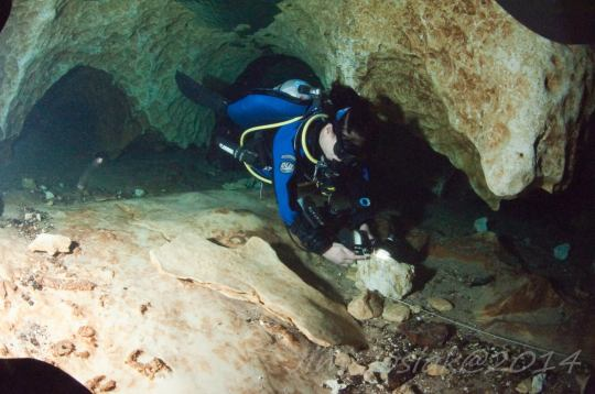 Cave diving in Florida: As part of your Divemaster training, it's important to be able to walk the walk and talk the talk - make sure your dive skills are top notch because students are a reflection of their instructors and their training.